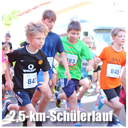 2,5-km-Lauf